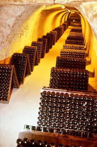 Champagne bottles in pupitre, Taittinger, France