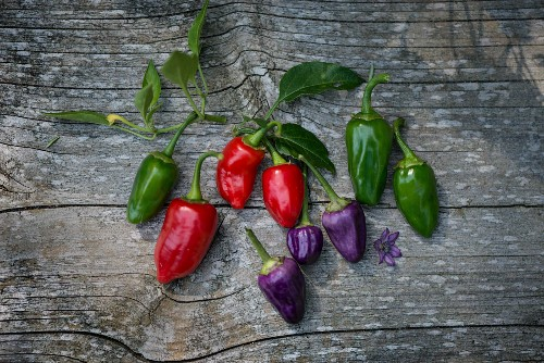 Various different coloured chilli peppers on a wooden surface