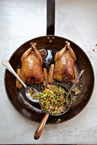 Roast piegon and braised peas