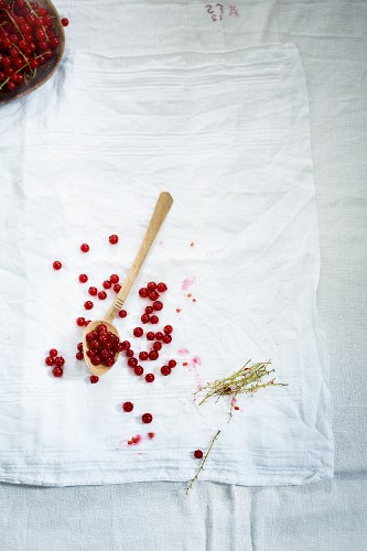 An arrangement of redcurrants, empty redcurrant stems, a wooden spoon and a linen cloth