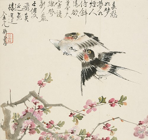 A pair of swallows, 1857
