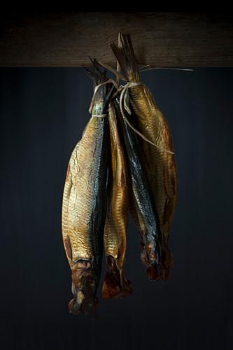 Hanging smoked fish
