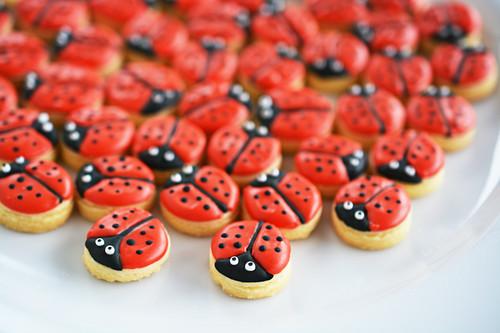 Lots of little ladybird motif cookies