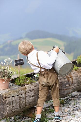 A little boy wearing lederhosen watering herbs on a mountain