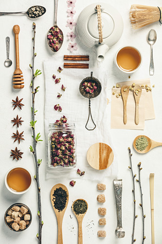 Creative pattern with Different kind of tea in wooden and silver spoons, tea pot and cups, spring branches, honey, sugar and spices on vintage canvas background. Tea time, spring and positive thinking concept