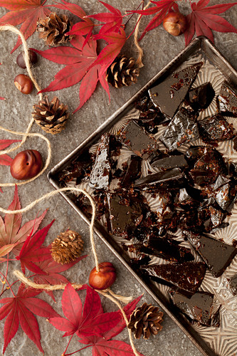Bonfire Toffee Chunks on a Tray with Autumn Leaves