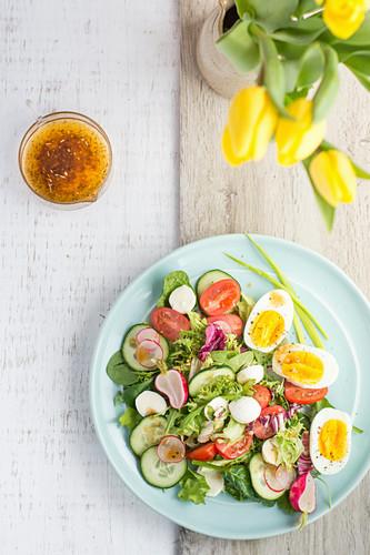 Bunter Salat mit Mozzarella und Ei