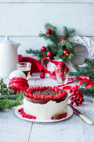 Russian bird milkcake with chocolate and red berries