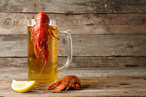 Beer party. Still life with glass of beer, crayfish crawfish against old wooden rustic background