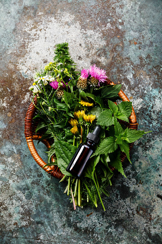Meadow and Medicinal herbs and herbal tincture for clean eating biohackers paleo diet