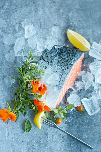 Roher Lachs mit frischen Kräutern auf Eis