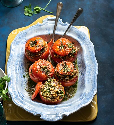 Gefüllte Tomaten mit Graupen und Petersilienpesto