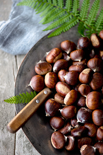 A plate of foraged chestnuts on a rustic background