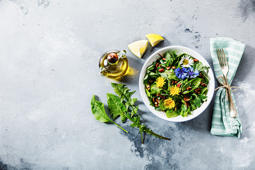 Salad from Meadow and Medicinal herbs with dandelion and nettle leaves for clean eating biohackers paleo diet