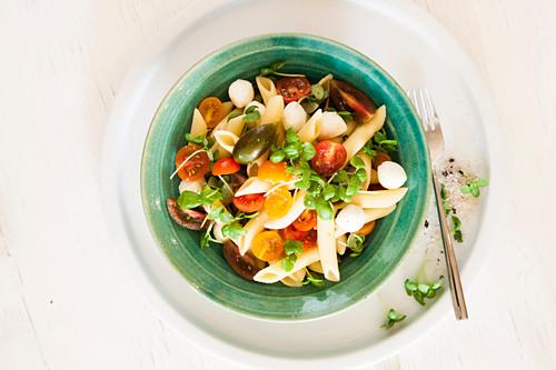 Cold pasta salad with mozzarella