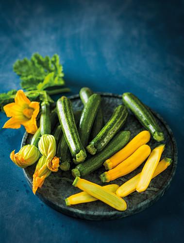Zucchiniblüten und grüne und gelbe Zucchini