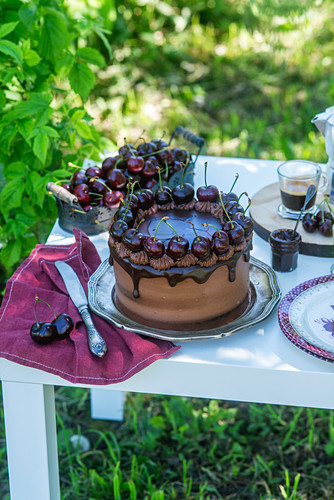 Chocolate and cherry cake in a garden