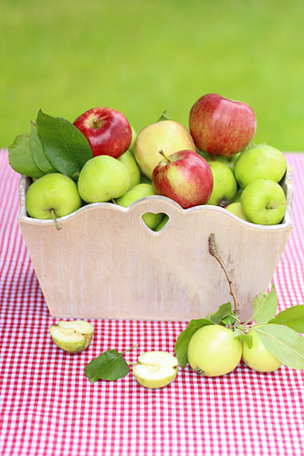 Various types of apples in a basket
