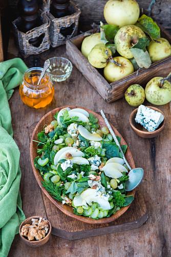 Apple, walnut, blue cheese salad with honey dressing