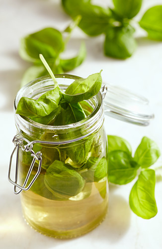 Homemade basil vinegar in a glass with fresh basil and Aceto Balsamico Bianco