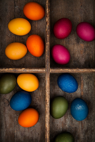 Easter eggs coloured with organic dyes in a seedling tray