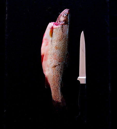 A fresh trout with a knife