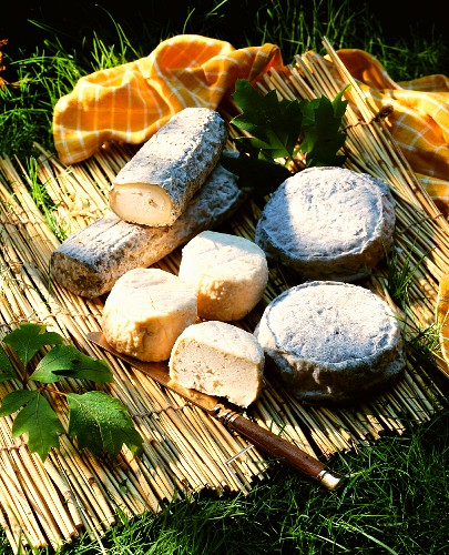 Various goat's cheeses with knife on straw mat
