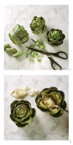 Preparing artichokes, Florentine style