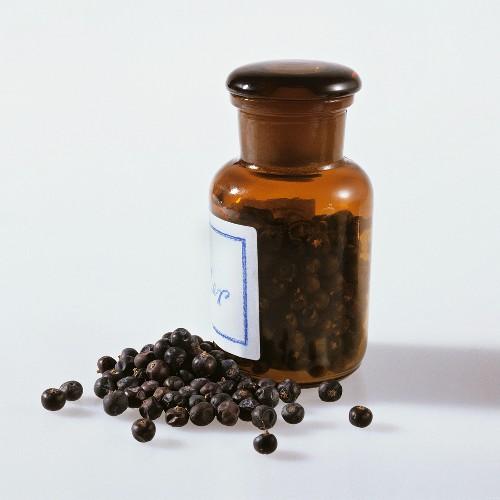 Juniper berries in spice jar and lying beside it