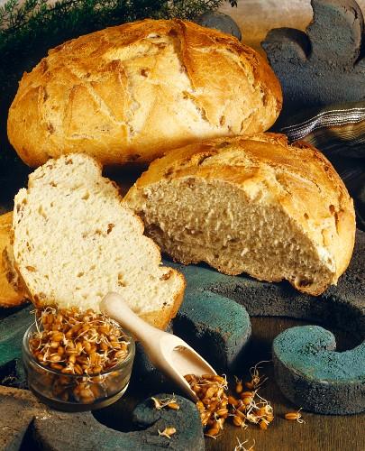 Wheatgerm bread