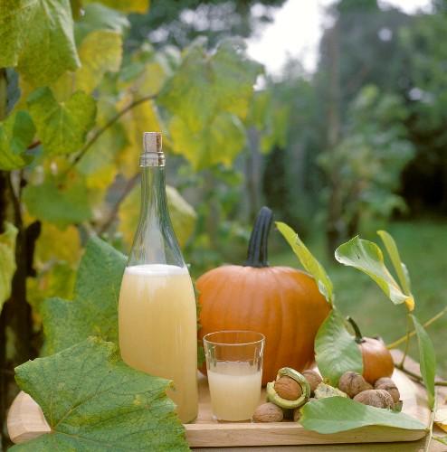 Federweisser (new wine), pumpkins & walnuts on garden table
