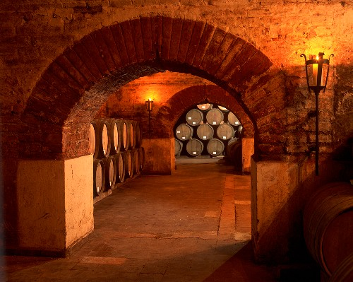 Wine cellar of the Errazuriz Panquehue Winery, Chile