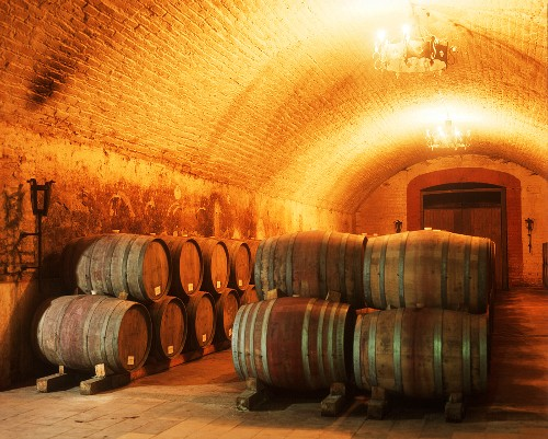 Fine wine cellar of the Vina Errazuriz Winery, chile
