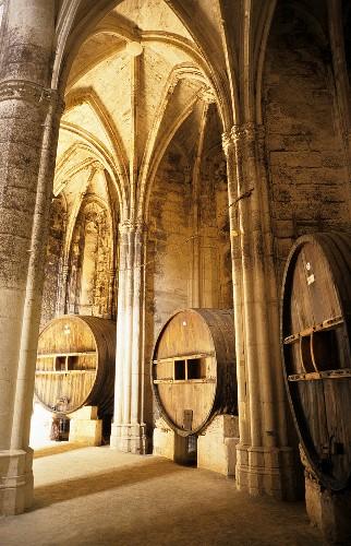Weinfässer lagern in Kirche, Chateau Valmagne, Languedoc