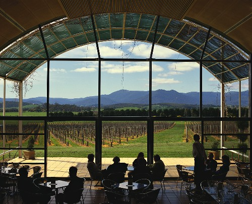 Tasting room with view of vineyard, Domaine Chandon