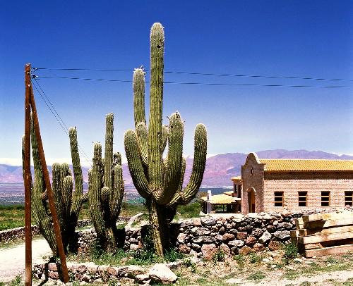 The Bodega El Paraiso near Cafayate, Salta, Argentina