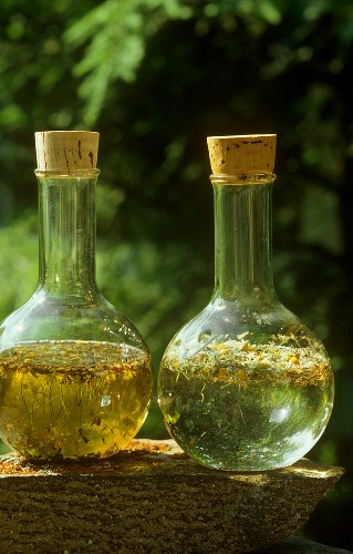 Chamomile oil and tonic lotion