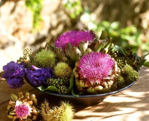 Autumnal arrangement of artichoke flowers and chestnuts