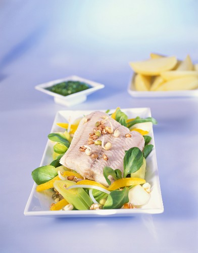 Steamed catfish fillet on sprouts and corn salad