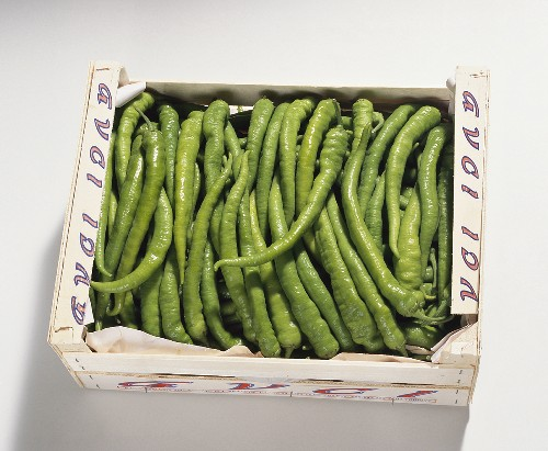 Green chili peppers in packaging, Turkey