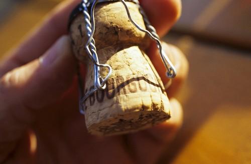 Hand holding Cremant de Bourgogne cork