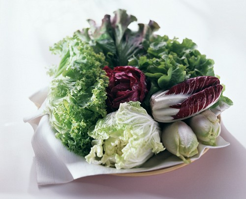 Various salads with Chinese cabbage & chicory on plate