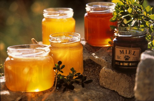 Various types of honey from Provence in open jars