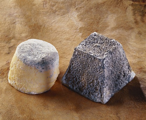 Toucy and Valencay, French goat's cheeses
