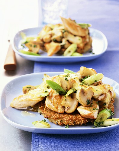 Turkey breast fillet with mushrooms on potato pancake