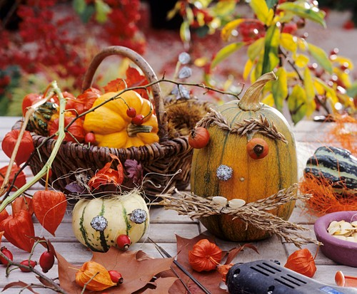 Ornamental gourds with amusing faces