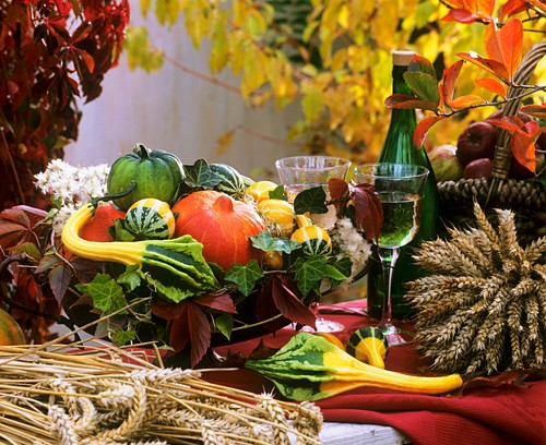Autumn still life: bowl of ornamental gourds