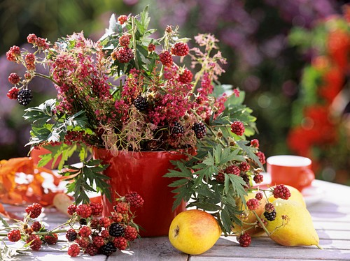 Late summer arrangement of blackberry shoots, Erica (heath)