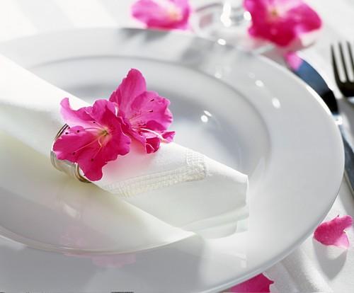 Azalea flower on napkin