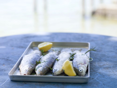Trout with lemon halves & herbs ready for grilling at lakeside